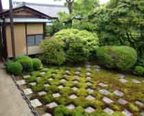Moss Grows Abundantly In Many Parts Of Japan. Known As Koke In Japanese, It  Is A Ground Cover That Is Commonly Seen In Japanese Gardens.