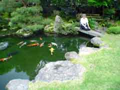 What Makes A Water Garden Japanese In Style Why Is The Such Revered Form Of Pond And Lake Landscaping